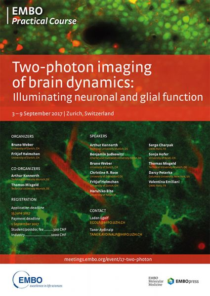 tl_files/glia-network/images/17-two-photon.jpg
